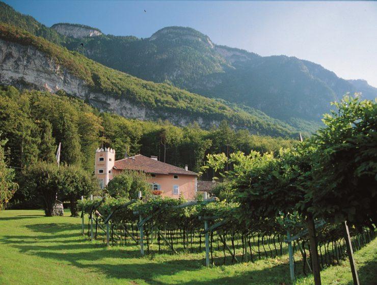 Tenuta Barthenau - Weingut Barthenau - Barthenau estate