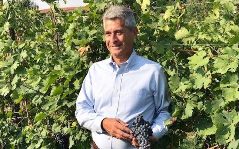 Luigi Turco presidente cantina Valpantena