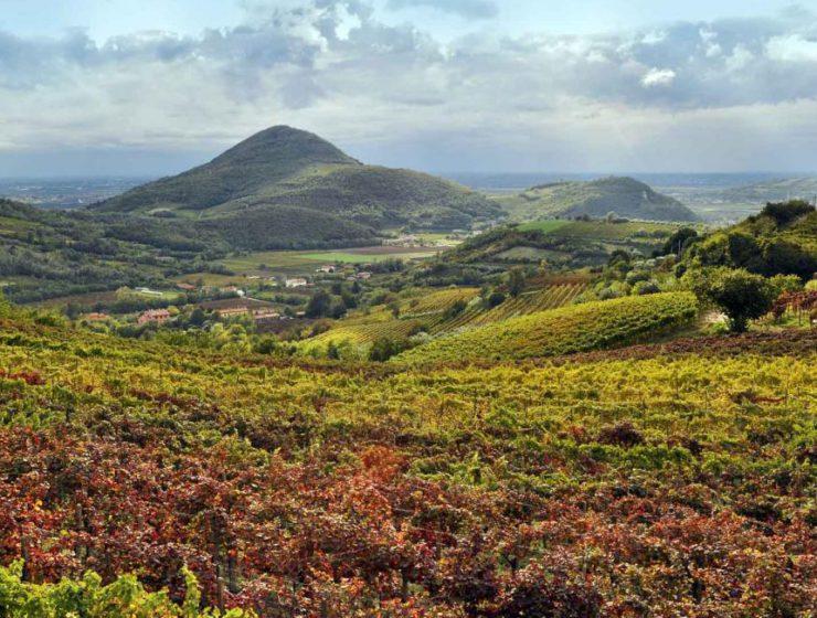 Le colline dei Colli Eiganei