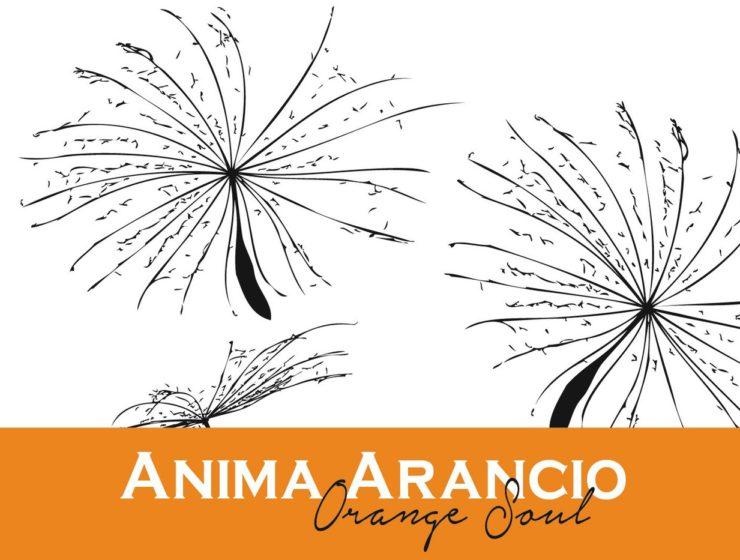 """Anima arancio"" Arneis di Giacomo Fenocchio"