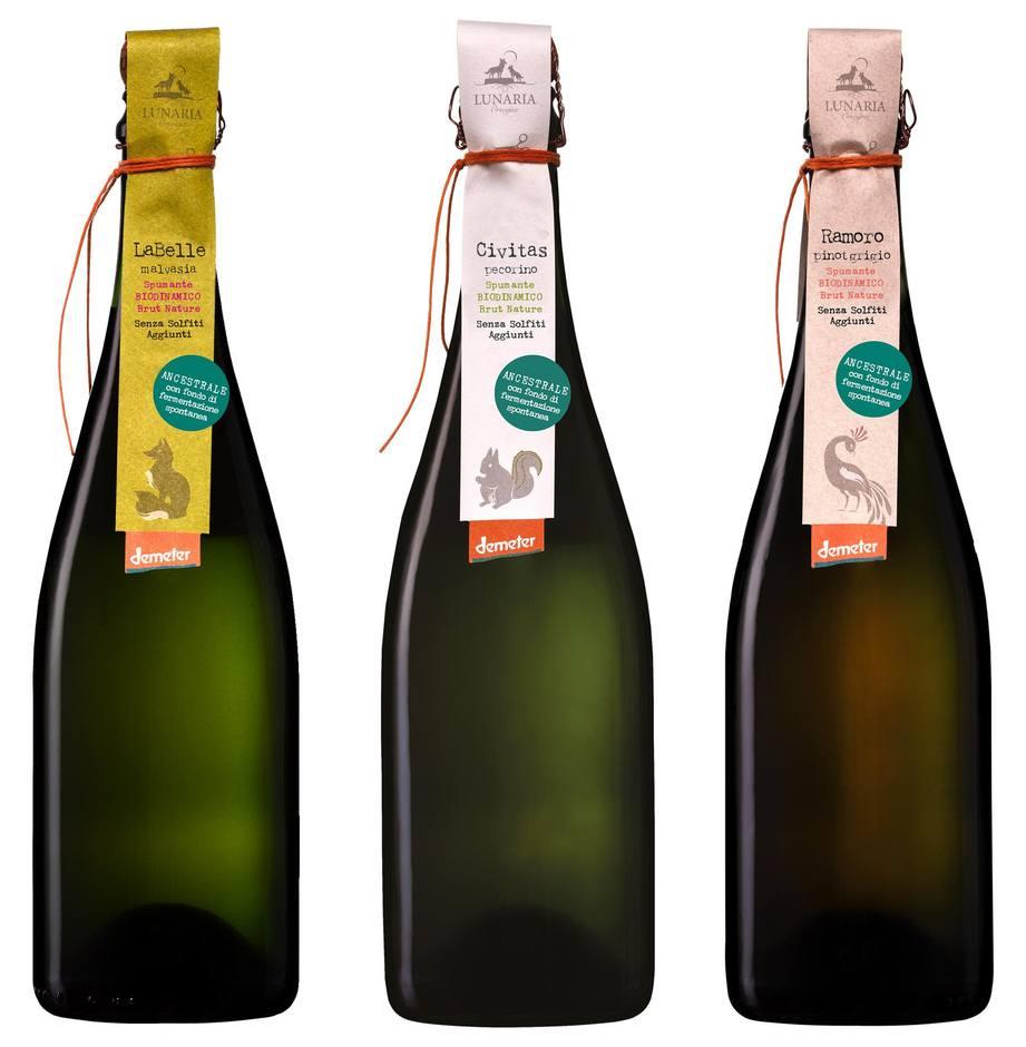 Cantina Orsogna 1964 bollicine Green di Malvasia, Pecorino e Pinot Grigio