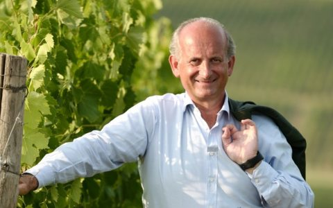 Lamberto Frescobaldi - vineyard[