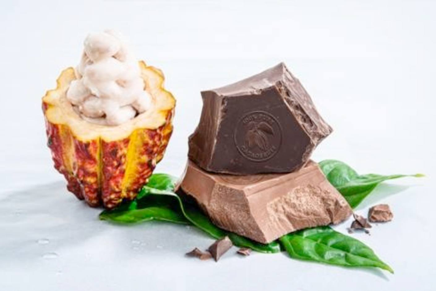wholefruit chocolate